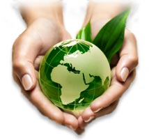 Ecological Solutions for the future of our planet